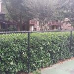 high quality fence construction near Orlando